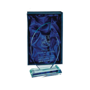 Jade Glass Award 22cm