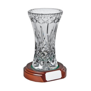 Glass Award Crystal 17.5cm