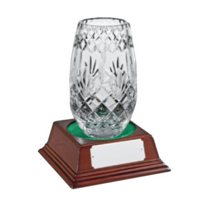 Glass Award Crystal 20cm