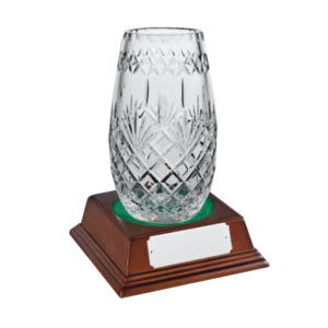 Glass Award Crystal 23cm