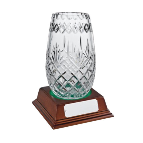 Glass Award Crystal 25cm
