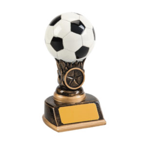 Soccer Ball Award